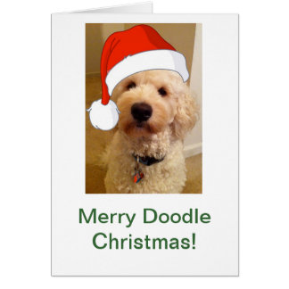 Merry Doodle Christmas! Card