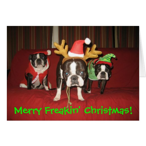 Merry Freakin' Christmas! Greeting Cards