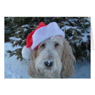Merry GBGV Christmas Cards