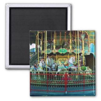 merry-go-round magnet