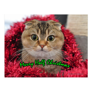 Merry half Christmas workaholics cute cat card Postcard