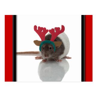 Merry Ratmas Postcard