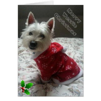 Merry Westie Christmas Card for your westie