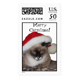 MerryChristmas! Cat Stamp