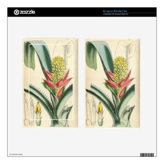 Mertensii de Aechmea (= mucroniflora) Kindle Fire Pegatina Skin