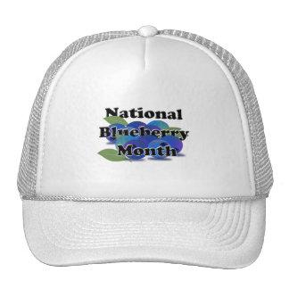 Mes nacional del arándano gorras de camionero