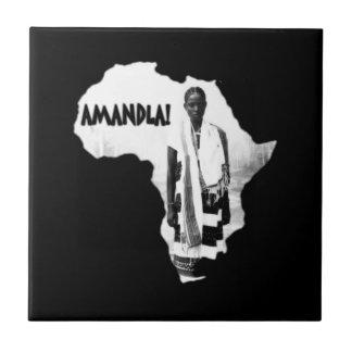 ¡Mes negro de la historia - AMANDLA! Azulejo