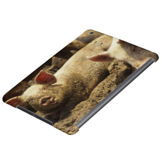 MES: Ste Genevieve, granja de cerdo