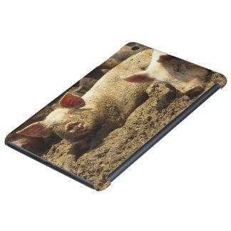 MES: Ste Genevieve, granja de cerdo Funda Para iPad Mini