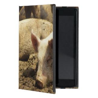 MES: Ste Genevieve, granja de cerdo iPad Mini Carcasa
