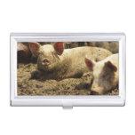 MES: Ste Genevieve, granja de cerdo Cajas De Tarjetas De Presentación