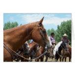 """""""MES - Un gran caballo"""" Notecard Felicitaciones"""