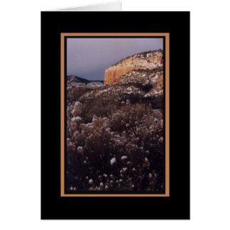 Mesa 1-Blank Card