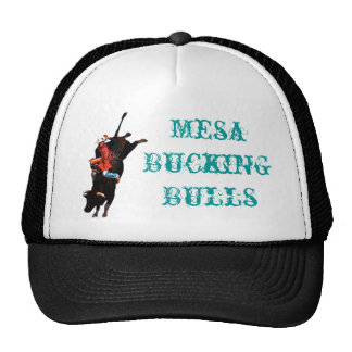 mesa bucking bulls hat