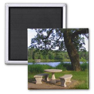 Mesa de picnic debajo de un árbol de sombra cerca imán cuadrado