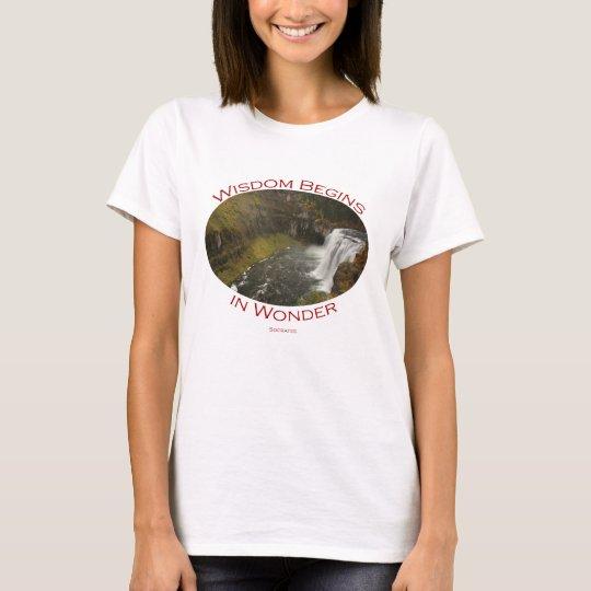 Mesa Falls T-Shirt
