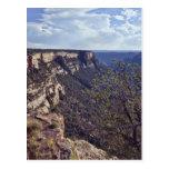 Mesa Verde Colorado Postcard