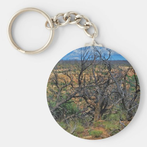 """""""Mesa Verde National Park"""" collection Key Chain"""