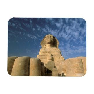 Meseta de África, Egipto, El Cairo, Giza. Esfinge Iman De Vinilo