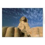 Meseta de África, Egipto, El Cairo, Giza. Esfinge Tarjeta De Felicitación