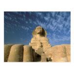 Meseta de África, Egipto, El Cairo, Giza. Esfinge Tarjetas Postales