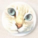 mesmerEYES del gato Posavasos Para Bebidas