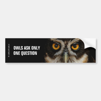 Mesmerizing Golden Eyes of a Spectacled Owl Bumper Sticker