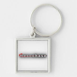 Mesochase Keychain! Keychain