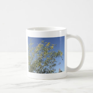 Mesquite Branches Against Sky Coffee Mug