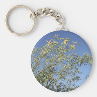 Mesquite Branches Against Sky Keychains