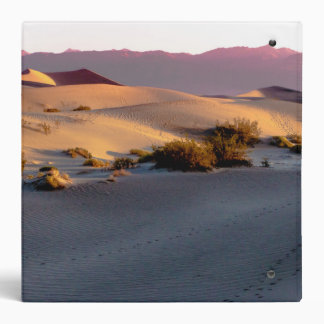 Mesquite Flat sand dunes Death Valley Binder