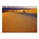 Mesquite Flat Sand dunes in Death Valley Postcard