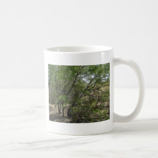 Mesquite Trees Coffee Mug