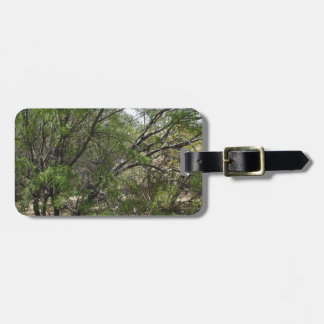 Mesquite Trees Luggage Tag