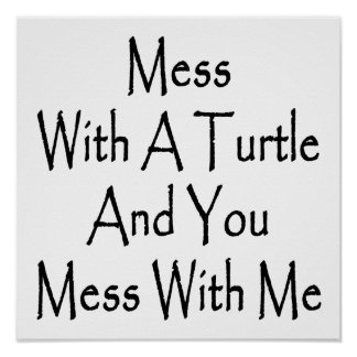 Mess With A Turtle And You Mess With Me Poster
