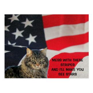 Mess With Flag Make You See Stars Postcard