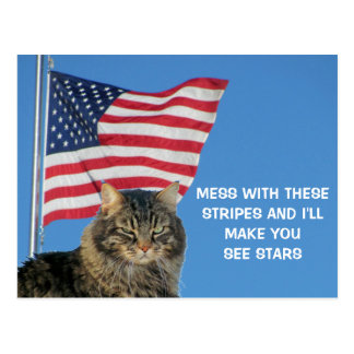 Mess With These Stripes Make You See Stars Postcard