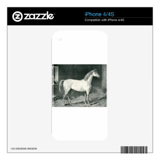 Messenger Horse by George Stubbs iPhone 4S Decal