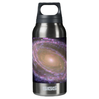 Messier 81 Spiral Galaxy Insulated Water Bottle