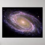 Messier 81 Spiral Galaxy Poster