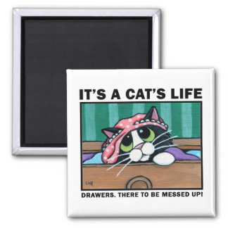 Messy Drawers v.01 - It's A Cat's Life Magnet