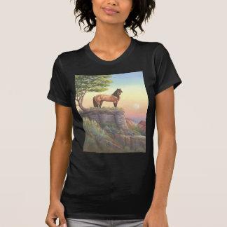 Mesteno Tshirts