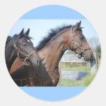 Meta de la carrera de caballos pegatina redonda