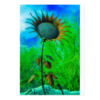 Metal Art Sunflower Colorful Background Postcards