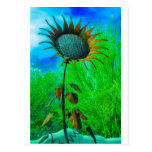 Metal Art Sunflower Colorful Background Postcards