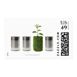 Metal cans and new seedling growth showing postage
