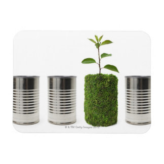 Metal cans and new seedling growth showing rectangular photo magnet