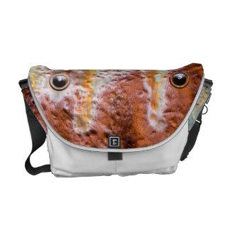 metal eyes rust messenger bag