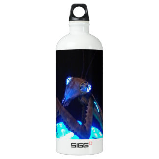 metal praying mantis - 1.jpg aluminum water bottle