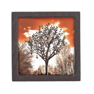 metal tree on the field orange tint gift box